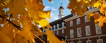 view of the Illini Union through fall leaves