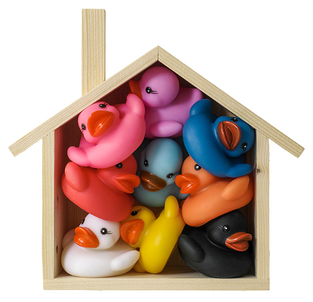 multicolored rubber ducks crammed together in a small wooden house