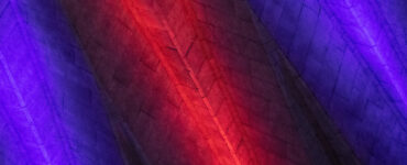 abstract of State Farm Center's roof with streaks of colored light