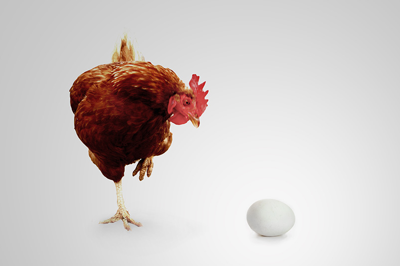 a chicken and an egg